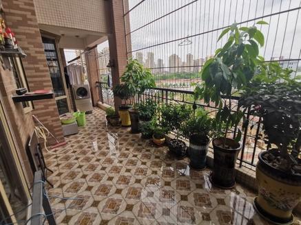 只发真实房源 金山湖富人区 金山湖花园 豪华装修 实用面积420平