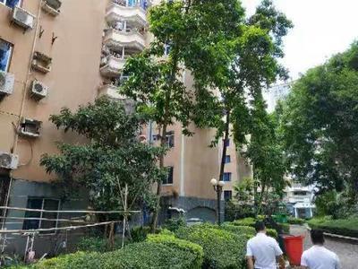 真房源 好房子 金迪星苑 3房 中层 证满5年 仅售47万 随时看房