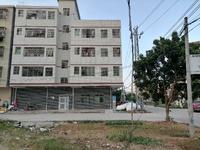 水口岭头村 整栋出售 双证齐全 产权969 实用1076平米 可租售都行