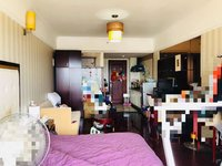 丽格公寓带富民学区房 稀缺房源 拎包入住 带租约出售