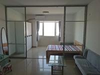 城市一号公寓 江景高层精装一房一厅出租1200元