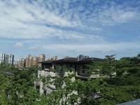 富豪请进 湖心岛独栋别墅 中洲中央公园 身份的象征 人类的束缚 顶级豪宅