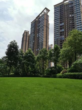 华润万象天汇旁 中洲天御大5房 绝版户型 好楼层 位置安静 看房有钥匙