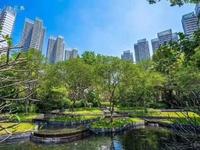 湖心岛内 千花岛网红盘 高端群体住宅 使用面积350平米 前后花园 看房方便!