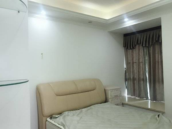 江北中心区 佳兆业旁 伟豪领域 豪华4室140平米4000元